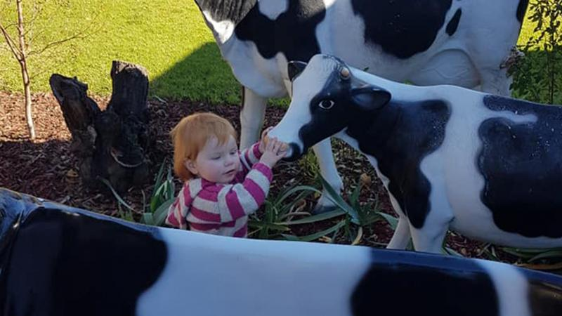 BIG4 Shepparton Park Lane Holiday Park - Toddler with Cows