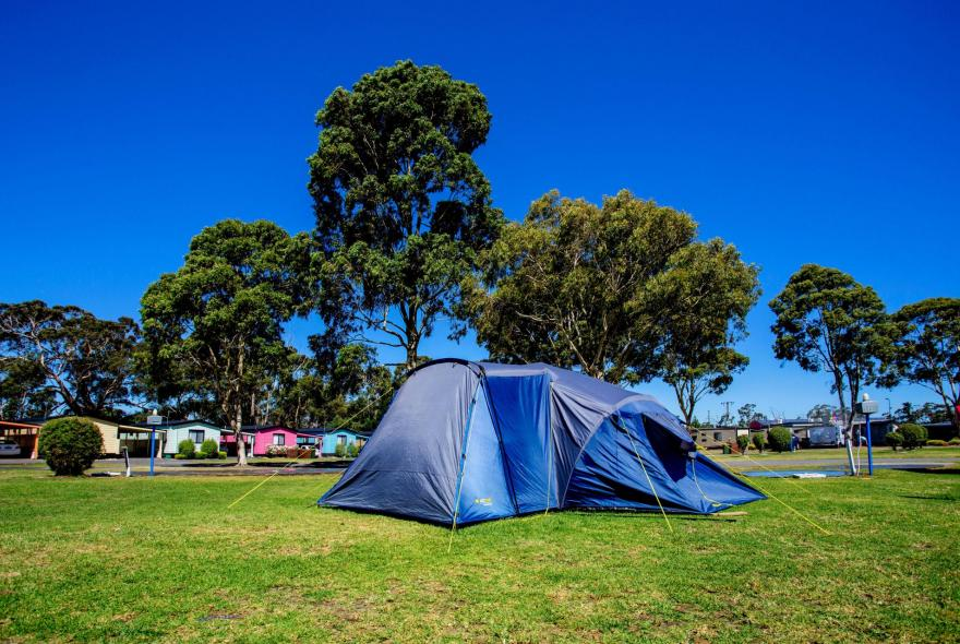 BIG4 Traralgon Park Lane Holiday Park - Powered Site - Tent