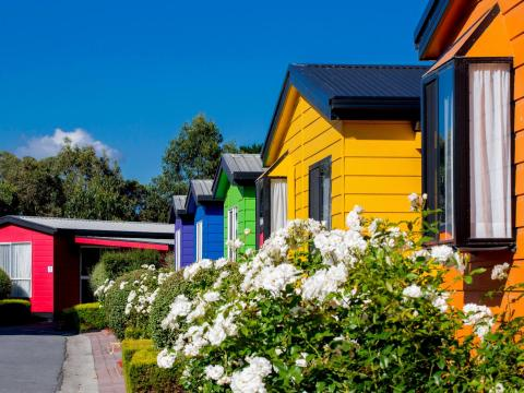 BIG4 Traralgon Park Lane Holiday Park - Coloured Cabin Accommodation