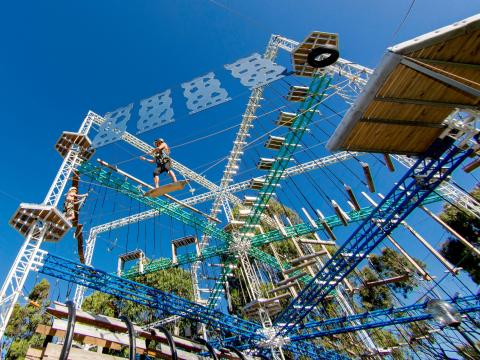 BIG4 Traralgon Park Lane Holiday Park - Adventure Ropes Course - Looking up from the ground