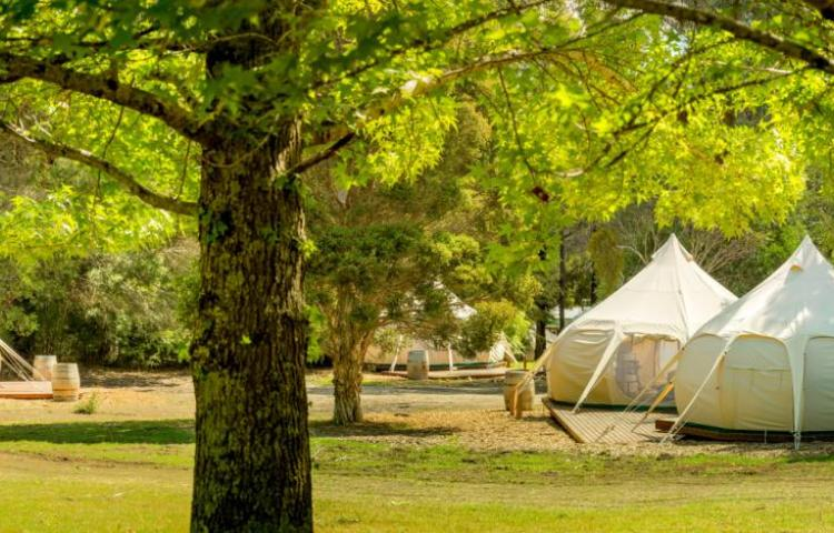 BIG4 Yarra Valley Park Lane Holiday Park - Glamping Belle Tents Precinct
