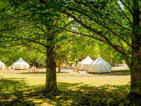 BIG4 Yarra Valley Park Lane Holiday Park - Glamping - Belle Tent Precinct