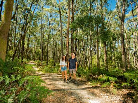 BIG4 Yarra Valley Park Lane Holiday Park - Couple on Nature Walk