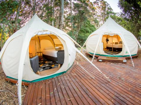 BIG4 Yarra Valley Park Lane Holiday Park - Glamping Belle Tent - Family - Outside Image
