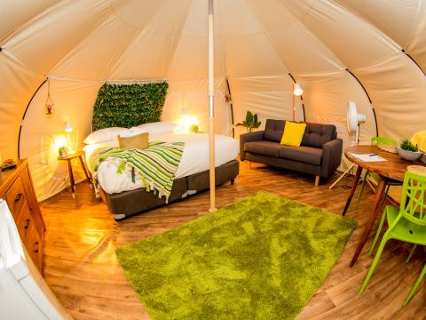 BIG4 Yarra Valley Park Lane Holiday Park - Glamping Belle Tent - Single - Interior