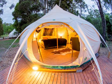 BIG4 Yarra Valley Park Lane Holiday Park - Glamping Belle Tent - Single