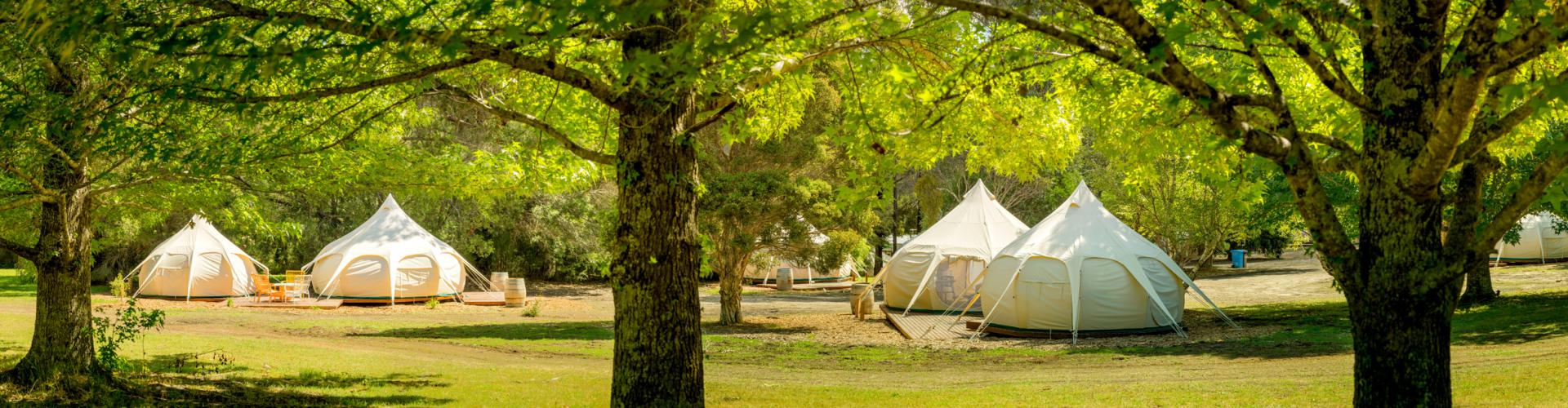 BIG4 Yarra Valley Park Lane Holiday Park - Glamping Belle Tents