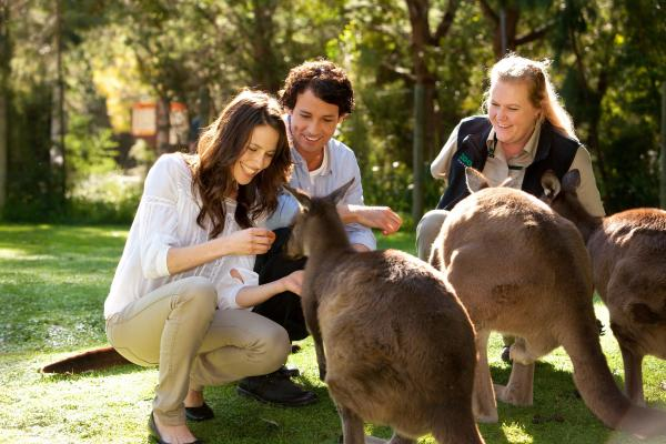 BIG Yarra Valley Park Lane Holiday Park - Sanctuary Package